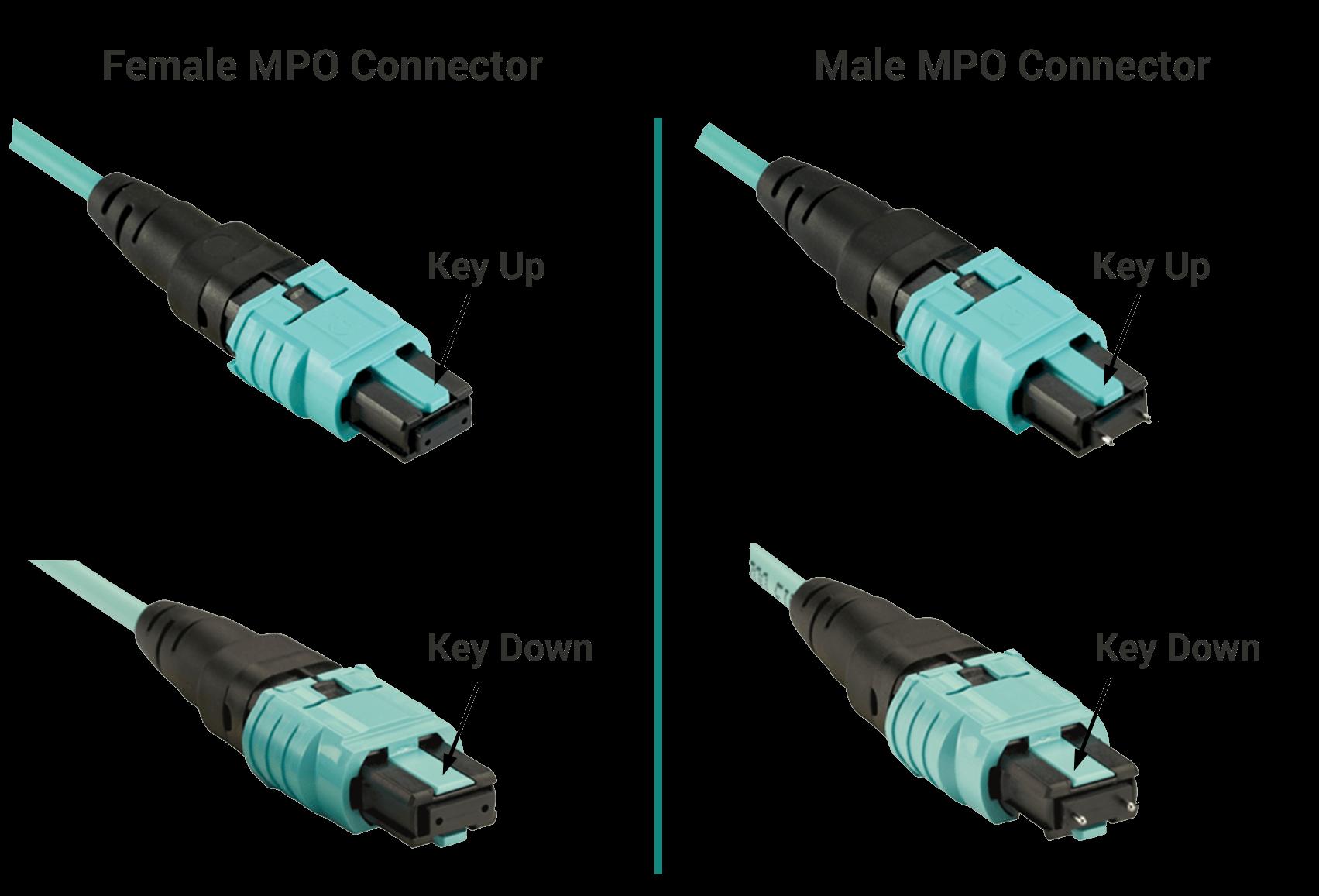 male-female-mpo-connectors